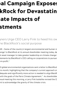 Global Campaign Exposes BlackRock for Devastating Climate Impacts of Investments