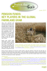 Pension funds: key players in the global farmland grab