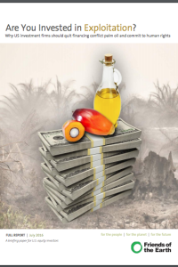 Are You Invested in Exploitation? Why US investment firms should quit financing conflict palm oil and commit to human rights